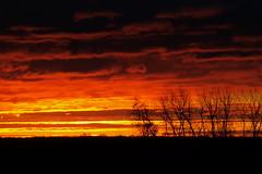 Sky on Fire (Phil In Kansas) Tags: red orange silhouette sunrise fire lawrence ks commute kansas