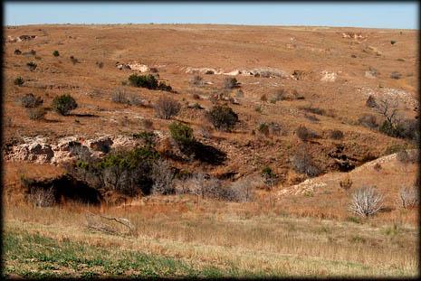 nm-landscape
