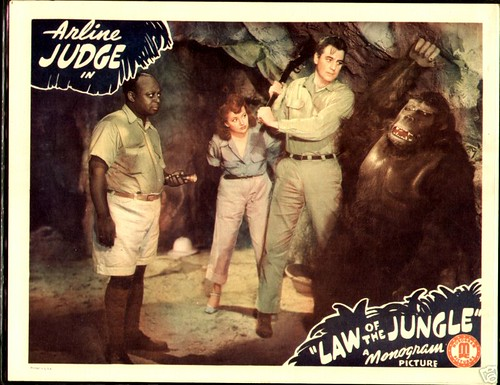 LAW OF THE JUNGLE lobby card