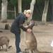 Blurry kangaroo hug