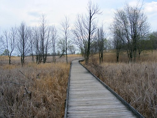 Maumee Bay Boardwalk