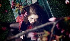 treecreep (Andrew Snow) Tags: portrait toronto ontario festival 35mm highpark cherryblossom