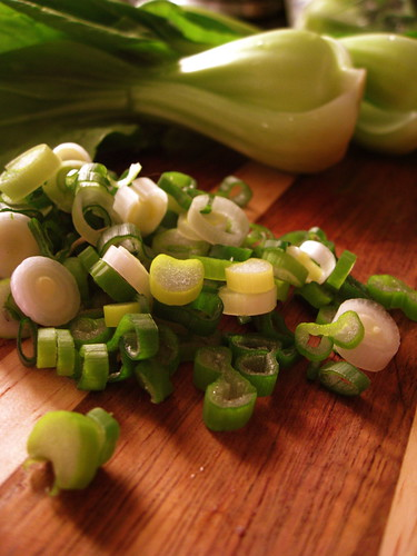 green onion close up