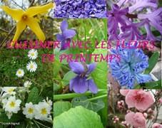 Image  Papilles et Pupilles - Cuisiner avec des fleurs de printemps