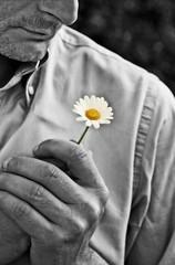 Di quante parti è fatta la Felicità (FotoRita [Allstar maniac]) Tags: bw italy white black rome flower roma colors digital portraits canon cutout hands mani daisy fiore myfavourites canoneos350d eos350d margherita byfotorita cinquantinoinoino