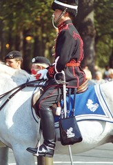 mounted police 36 (nico1959) Tags: spurs uniform police mounted shining beredenpolitie