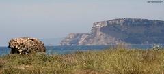 Life (CarloAlessioCozzolino) Tags: life sardegna sea beach mare sardinia searchthebest spiaggia vita hermanmelville selladeldiavolo passionphotography golfodegliangeli