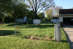 Yard before digging