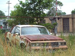 Cutlass Supreme (BACKYard Woods Explorer) Tags: fence rust decay oldsmobile railroadcrossing cutlass phonepole cutlasssupreme