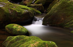 Stream on the Roaring Fork Motor Nature Trail (John Elrod) Tags: longexposure water tennessee gatlinburg aftersunset roaringforkmotornaturetrail smokymountainsnationalpark naturesgallery goldenvisions naturefavorite~