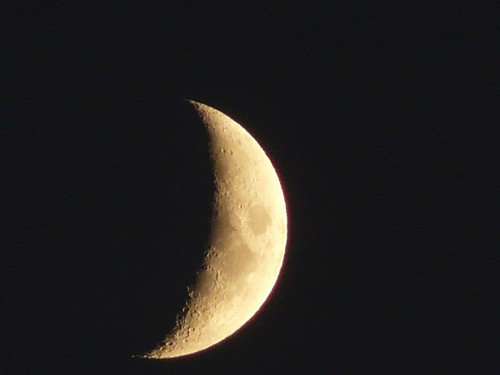 My first moon shot