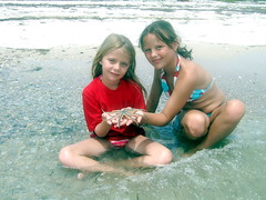Jordyn, Carolyn and the 9 Armed Starfish