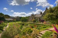 An English Country Garden - Cotehele (Nala Rewop) Tags: house garden cornwall riverside nt country tudor nationaltrust grounds cotehele