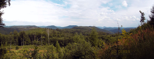 Blue Mountains - Pfälzer Wald Panorama