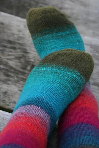 365-94 (nuzzled socks)