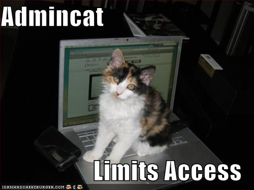funny-pictures-cat-limits-your-computer-access.jpg by jameswhitefanclub.