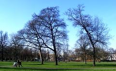 Another aspect of Greenwich Park (m.m b) Tags: park london greenwich gimp places visit soe supershot golddragon mywinners abigfave platinumphoto ultimateshot theunforgettablepictures s5800 natureselegantshots damniwishidtakenthat