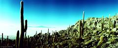 EilonPaz_60640013 (elasio) Tags: panorama southamerica lomo lomography horizon 2007