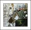 Rastros de esperanza (Ǎɗɑɭ) Tags: door window decay texturas decayed decadencia rasal tectures pirineooscense