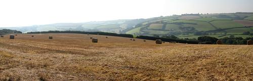 Loddiswell - Field Merge