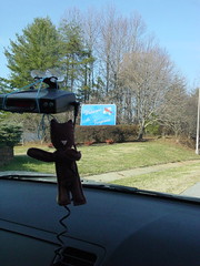 Janie Gugarumps reports her first road trip!