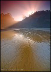 Short Beach Sunrise Vert (Darren White Photography) Tags: morning trees mountain west tourism beach nature water fog sunrise landscape sand nikon natural north beaches pacificnorthwest coastline oregoncoast rays sunrays d300 oregontravel traveloregon oregontourism darrenwhitephotography