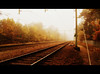 One Way Ticket To Escape Autumn (Mieke Vos Photographics) Tags: autumn trees two mist cinema colors lines fog forest movie escape ns experiment railway autumncolors seal orton foggyday nunspeet nederlandsespoorwegen davidbowiestationtostation thatswhatilike dolledokadonderdag fbsf netherlandsrailway iwantatickettothesun andastretcheronthebeach onaniceisland withpalms whitesandbetweenmytoes soundofrollingseawaves lieverddd herfstblaadddjes nstrajectamersfoortzwolle