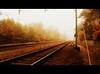 One Way Ticket To Escape Autumn (Mieke Vos Photographics) Tags: autumn trees two mist cinema colors lines fog forest movie escape ns experiment railway autumncolors seal orton foggyday nunspeet nederlandsespoorwegen davidbowiestationtostation thatswhatilike dolledokadonderdag fbsf netherlandsrailway iwantatickettothesun andastretcheronthebeach onaniceisland withpalms whitesandbetweenmytoes soundofrollingseawaves lieverddd herfstblaadddjes nstrajectamersfoortzwolle
