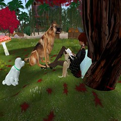 DOG STORIES (Just Gran..) Tags: dogs sl avatars virtual storys
