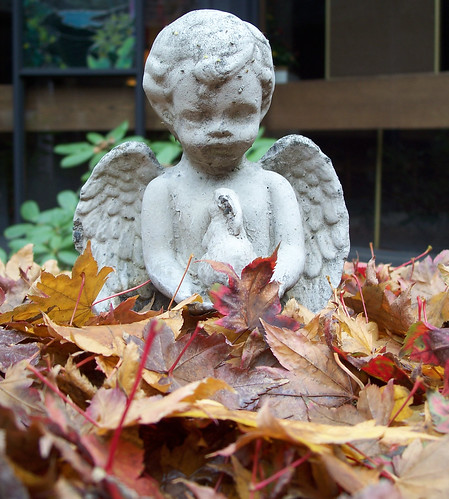 Angel in leaves