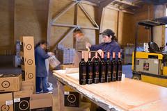 Chocaln (nikolira) Tags: chile vineyards vignes vino domaine wines cabernet chardonay chocalan nikolira