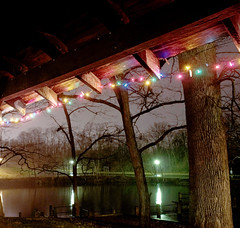 sheltered (Diana in Wonderland) Tags: trees light reflection water night landscape lights pond sony christmaslights ambience sonyalpha sonyalphaa200