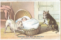 Richardson's New Music and Card Store (Miami U. Libraries - Digital Collections) Tags: music dogs children cards babysitting infants cradles victoriantradecards miamiuniversitylibraries muohiodigitalcollections musicpublishingindustry