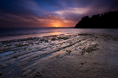What A Bay (Chris Gin) Tags: sunset newzealand beach bay auckland filter nz nd graduated wattle alemdagqualityonlyclub