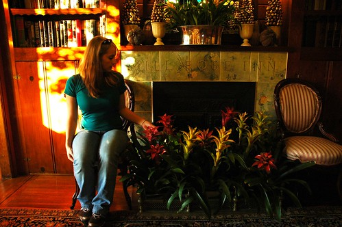Jessie planted by the fireplace at Mill Rose Inn, Half Moon Bay, California, USA by Wonderlane