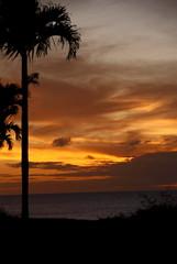 Sunset - Kapalua Bay Beach Park, Maui, Hawaii (Pedja Photo (Pedja G)) Tags: ocean sunset landscape hawaii scenery pacific maui hawaiiansunset a200 goldenhour mahalo predrag hawaiianbeach pedja sonyalpha sonya200 sal18250 pedjag sonyalphaphotography pedjaphoto predragg tgam:photodesk=magicgoldenhour pedjaphotography predragphotography