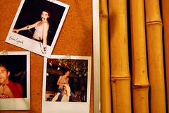 polaroids&bamboo