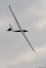 VDP-9 (Laurent CLUZEL) Tags: cold weather cap glider rc sailplane pasdecalais blancnez