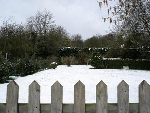 Spring Snow II