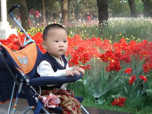 Beijing April '08 042