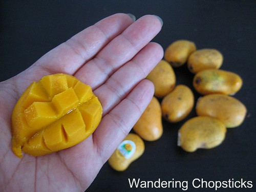 World's Smallest Mangoes 2