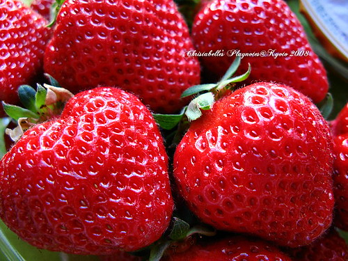 5991福岡的草莓一盒498日圓