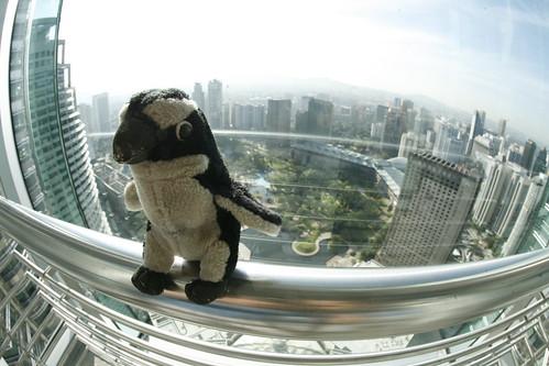 me desde las Torres Petronas