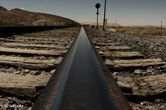 Rail (Satxvike) Tags: texas elpaso railroadtracks satxvike henrydelgado shootingwithchooch