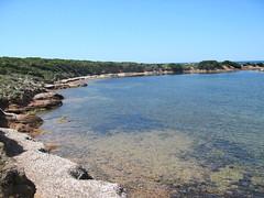Sur le sentier littoral après Saline Sottane