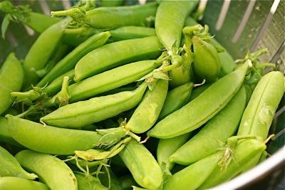 farmer's market snap peas