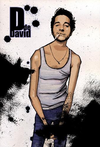 d de david. 2008