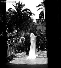 0032 (studiolof) Tags: rosarioloforti fotoloforti