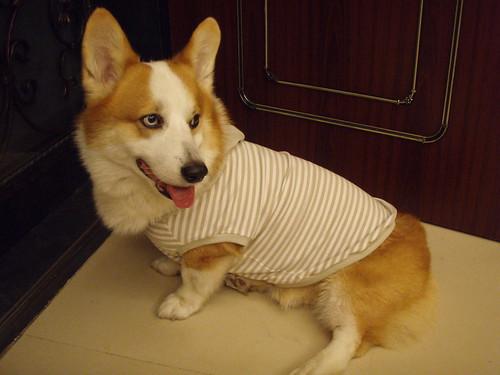 米魯阿罵的手作服... 穿起來很舒適喔..