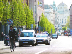 Stockholm, Sweden 045 - Ciudad Ciclista/City Cyclist (Claudio.Ar) Tags: street city color bike cycling calle europa europe sweden stockholm sony ciudad bicicleta ciclismo dsc estocolmo suecia h9 imagequality aplusphoto theunforgettablepictures overtheexcellence theperfectphotographer goldstaraward dragongoldaward flickrlovers claudioar claudiomufarrege